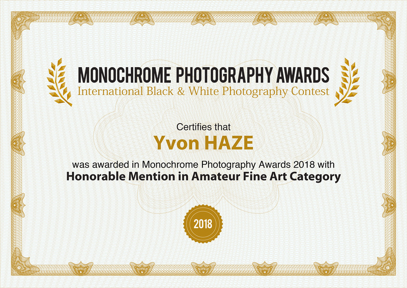 Honorable Mention in Amateur Fine Art Category